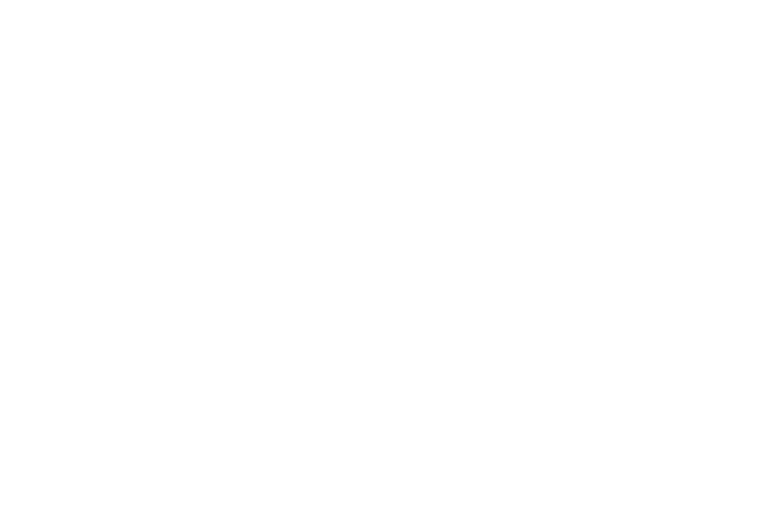 La Martina Eventos - Rol y funciones de las damas de honor